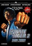 karate_tiger_2_front_cover.jpg