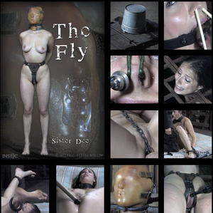 INFERNAL RESTRAINTS: Mar 22, 2016 | The Fly (BONUS) | Sister Dee